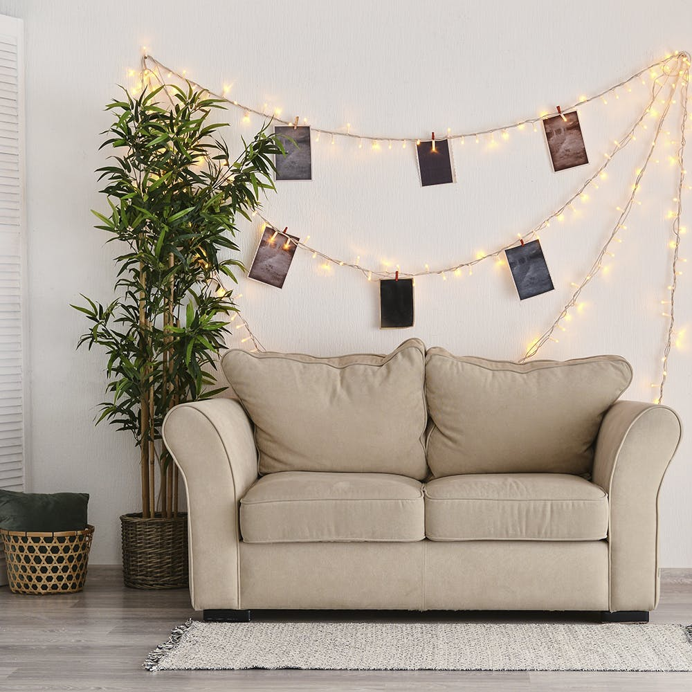 Furniture,Property,Couch,Plant,Rectangle,Comfort,Interior design,Picture frame,Wood,Living room